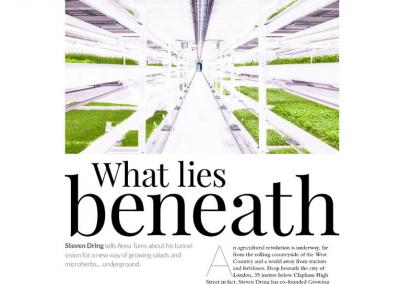 Growing underground – Manor magazine